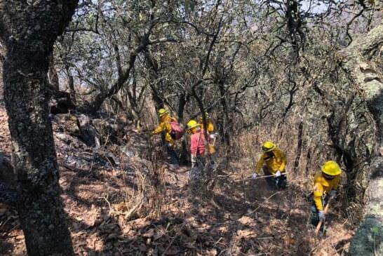 Realizan trabajos de contención y liquidación de incendios en el parque estatal sierra de Guadalupe