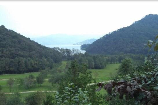 Diputado federal del PRI y funcionario de TV azteca pretende talar 80 hectáreas de bosque.