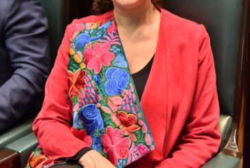 Mónica Álvarez, presidenta de la comisión especial para las declaratorias de alerta de género