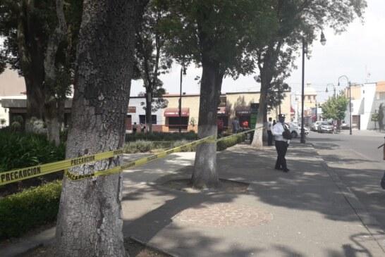 Cierra Toluca de manera temporal el Parque Cuauhtémoc-Alameda