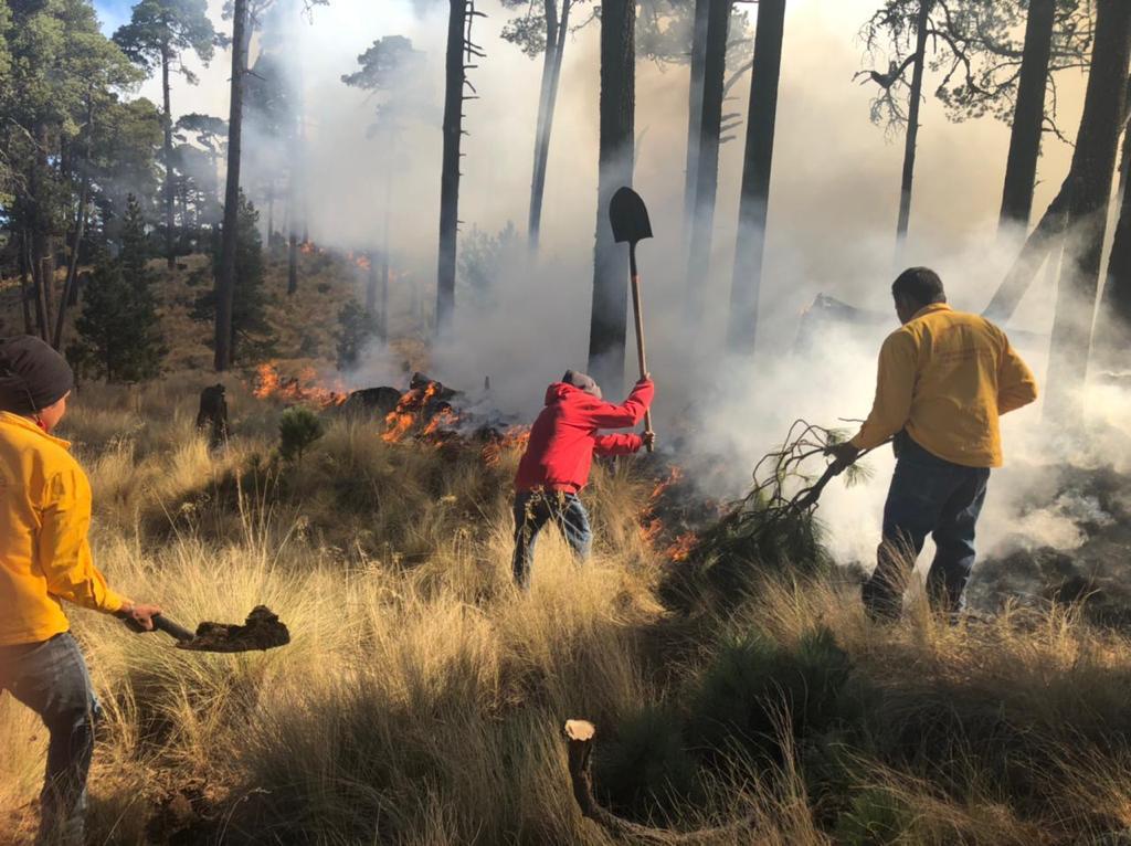 Combaten incendio en las inmediaciones del nevado de Toluca.