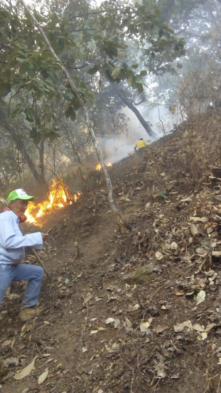Trabaja Probosque en control de incendio forestal en Teopazul, Tlatlaya