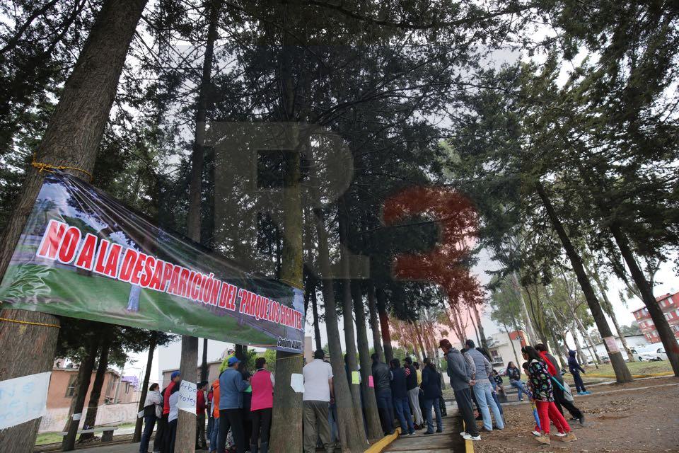 Va el gobierno de Alfredo del Mazo tras 50 árboles de un parque público
