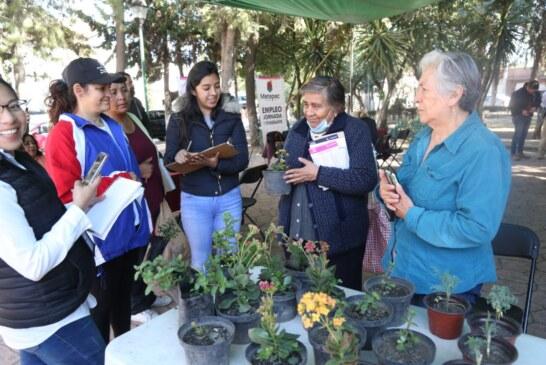 Mantiene Metepec atención para mujeres víctimas de violencia