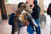 Gobierno de Metepec comprometido con el bienestar animal: Gaby Gamboa