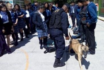 La secretaría de seguridad mantiene el operativo «mochila segura» en escuelas para proteger a los estudiantes mexiquenses.