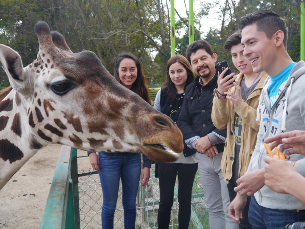 """Ofrece parque ecológico Zacango """"experiencia 4d"""" como opción para aprender de la fauna y especies que lo habitan"""