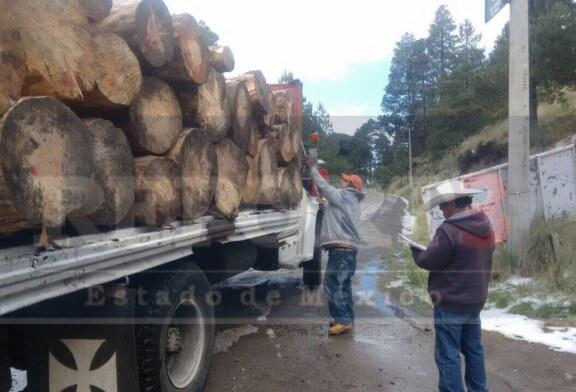 Ignacio Pichardo tras la tala de los bosques del Xinantecatl.