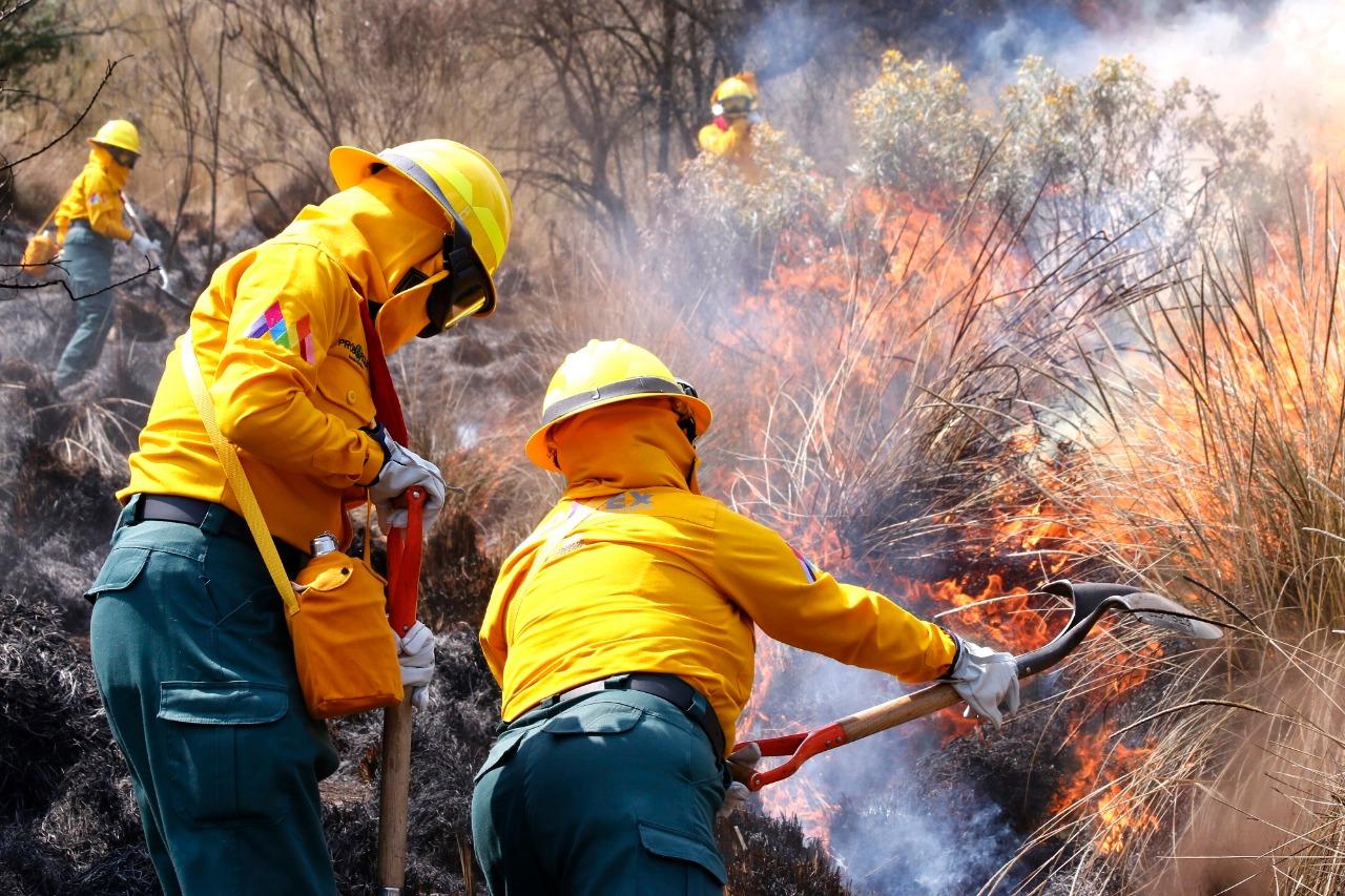 Sofocan 74 incendios forestales en Edoméx tan solo en enero.