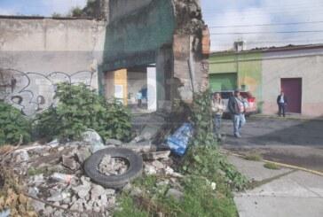 Atienden autoridades proliferación de fauna nociva en Santa Clara