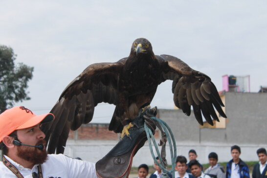"""Asombra """"El Castillo de las Águilas"""" a estudiantes toluqueños"""