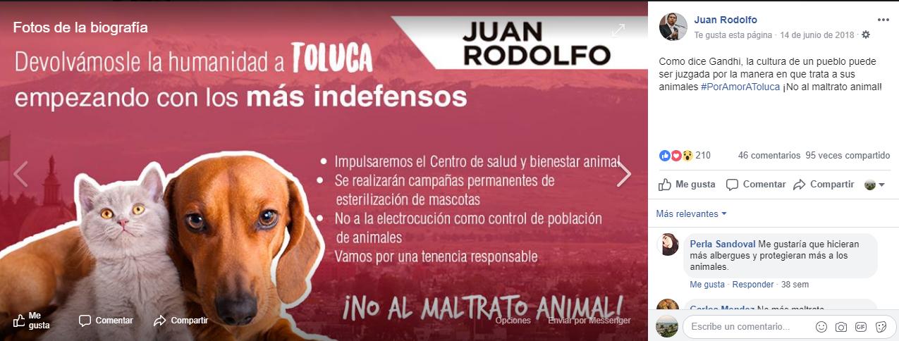 Le recuerdan a Juan Rodolfo que prometió en campaña cuidar a los animales