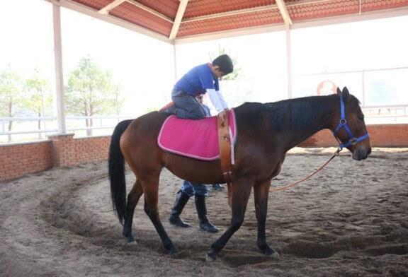 En Toluca transforma equinoterapia la vida de cientos de pequeños con discapacidad
