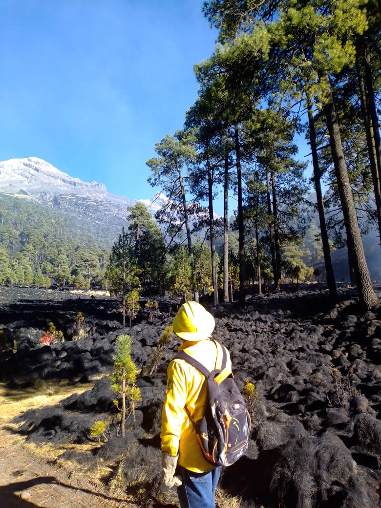 Avanzan 90 por ciento trabajos para concluir con el incendio forestal en región Izta-Popo