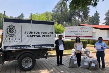 Producirá Toluca sus propios árboles para campañas de reforestación