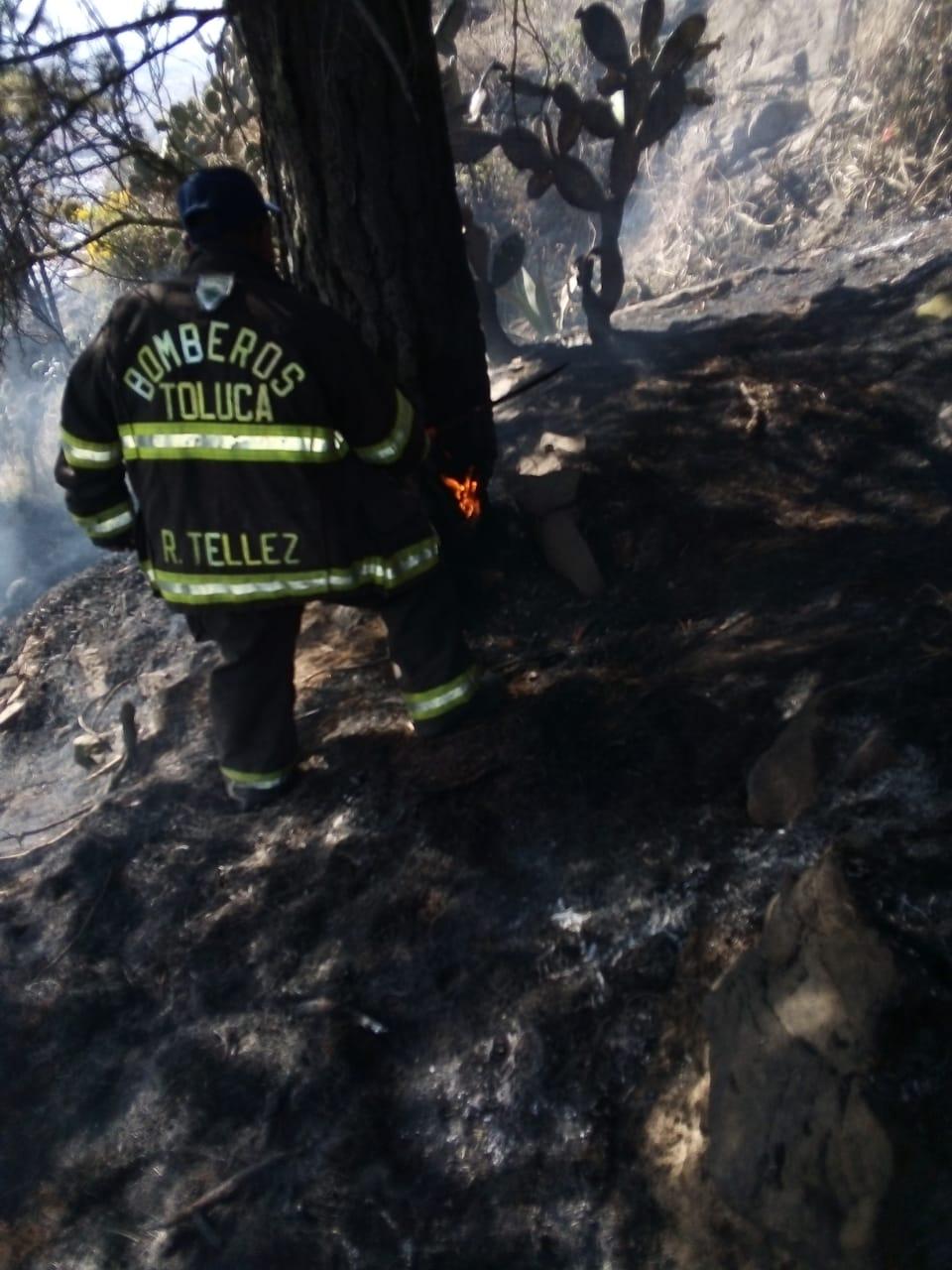 Sofocan Bomberos Toluca 34 incendios de pastizales