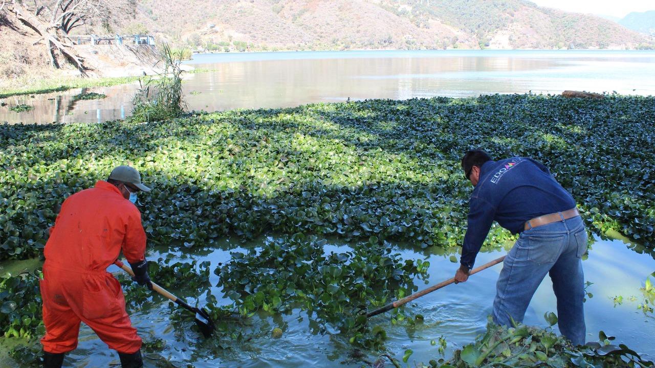 Retira CAEM microalgas de lago de Valle de Bravo