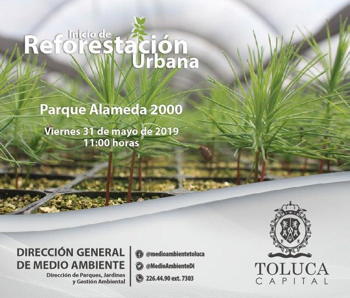 Invita Toluca a participar en la plantación de 1.5 millones de árboles